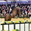Action Blue Euro Stallions Img01