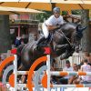 Baloutaire P S Euro Stallions Img01