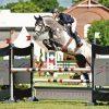 Catch Euro Stallions Img01