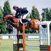 Machno Carwyn Euro Stallions Img01